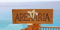 arenaria-out8