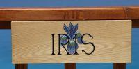 iris-out (9)